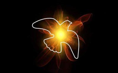Rozważanie na Uroczystość Najświętszej Trójcy Świętej