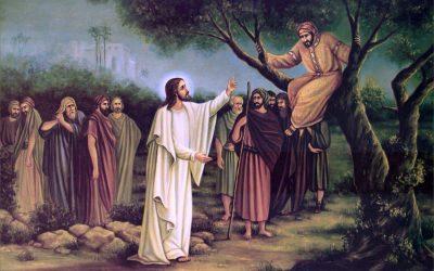 Rozważanie na XXXI Niedzielę Zwykłą