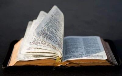 Rozważanie na XXVIII Niedziele Zwykłą