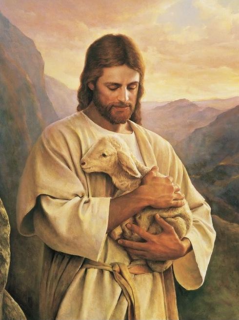 Rozważanie na IV Niedzielę Wielkanocną