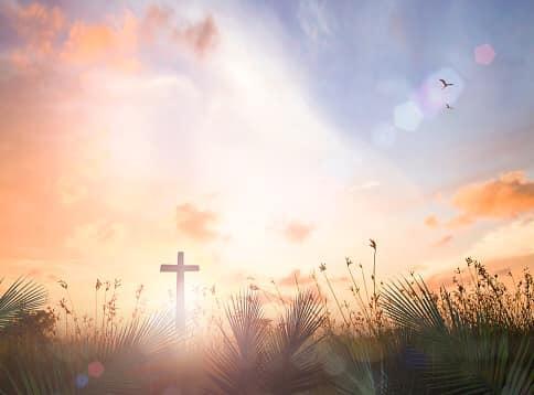 Rozważanie na XIII Niedzielę Zwykłą