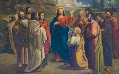 Rozważanie na XV Niedzielę Zwykłą